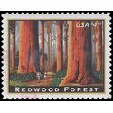 #4378 $4.95 Priority Mail Redwood Forest 2009 Used