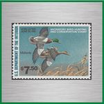 Federal Duck Stamps (RW)